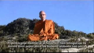 5 Yuttadhammo - Pet razloga zašto bi svako trebalo da meditira