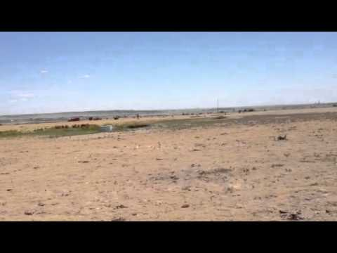 Rocket show pueblo 2012