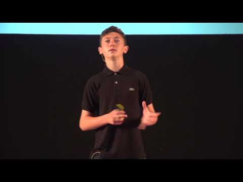 The Importance of real world connections with local & overseas business | Tom Hughes | TEDxStHelier