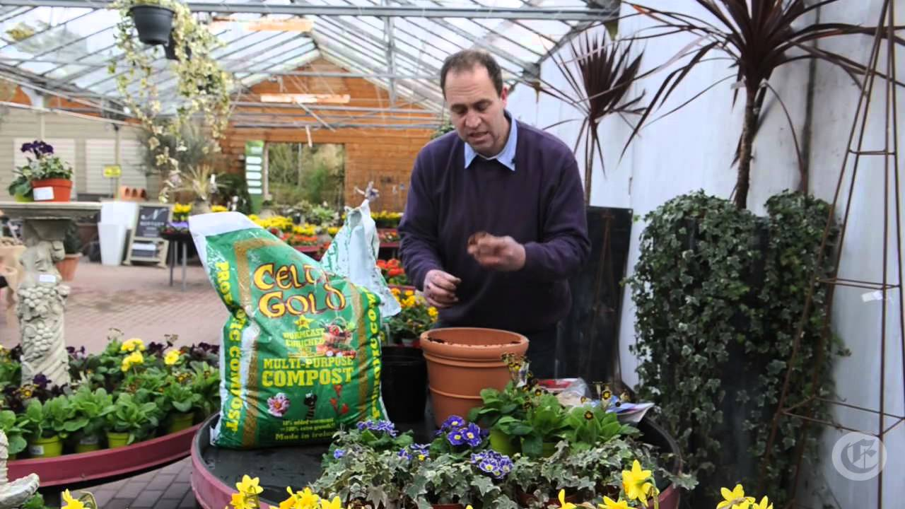 Weekly Gardening Tips Week 1 Youtube