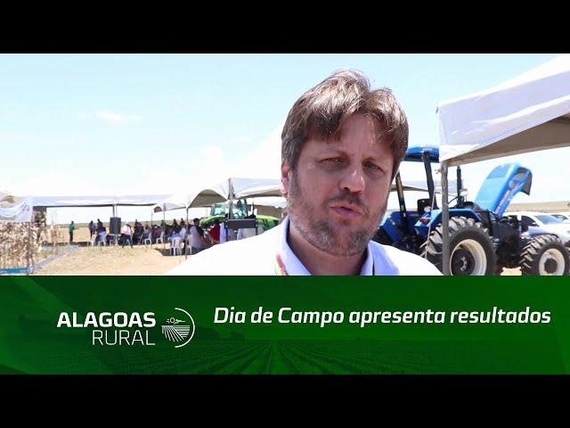 Dia de Campo apresenta resultados de experimentos do cultivo de grãos em Alagoas