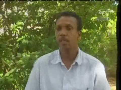 SBC Seychelles:  Setting up of Landscape & Waste Management Agency  18-07-09