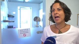 Ausgesetzt oder weggegeben: Hochbetrieb im Tierheim München zur Ferienzeit