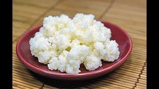 Cách nuôi nấm sữa Kefir ( Hướng Dẫn Chi Tiết )
