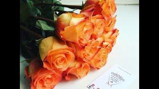 Студия цветов 🌺Romantique🌺 Доставка цветов 🚗 24 часа!(, 2016-07-27T12:31:58.000Z)