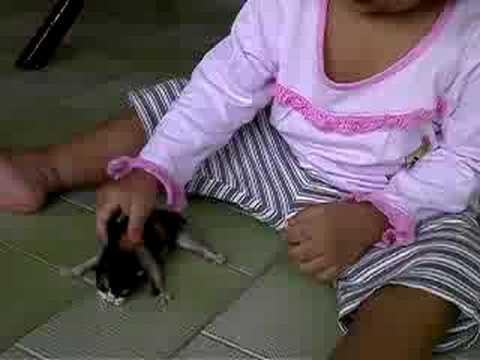 Lia play wt cat