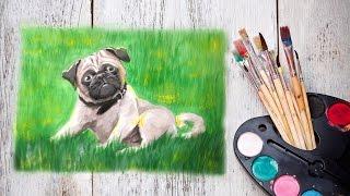 Уроки рисования! Как нарисовать мопса гуашью! #Dari_Art(Спасибо за идею! Anya Semyonova Очень хочется нарисовать мопса гуашью, хотелось бы такой видео-урок) Свои идеи..., 2015-09-21T13:00:30.000Z)