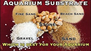 Which Substrate best for your Aquarium | Tamil |