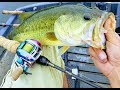 BnB Giant Bass on BFS custom rod fishing with bait finesse system gear combo