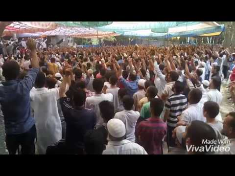Pro-fredom Raily in Chee Anantnag