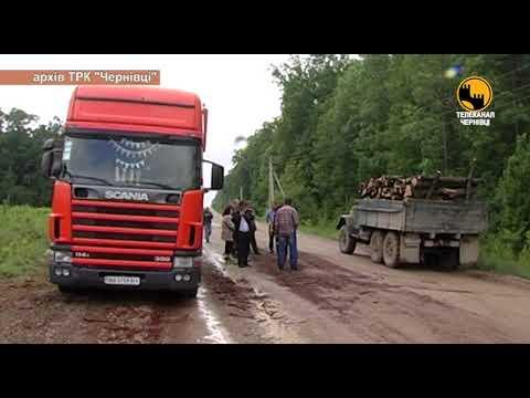 Телеканал ЧЕРНІВЦІ: Вищому керівництву області було відомо про порушення в управлінні лісового та мисливського господарс
