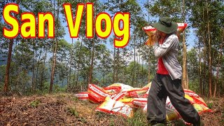 BỐC PHÂN II San Vlog