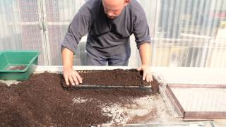 Terrateck - Paper pot transplanter seeding system in chain pot