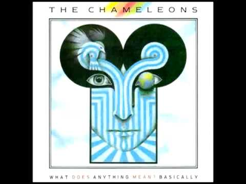 the chameleons perfume garden
