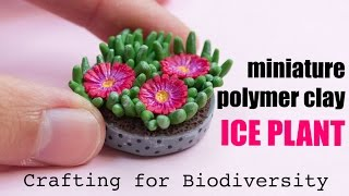Ice Plant Carpobrotus edulis // Invasive Crafted Species