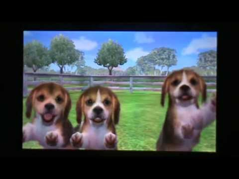 nintendogs cats s rie pisode 1 la vie avec mon beagle passage secret. Black Bedroom Furniture Sets. Home Design Ideas