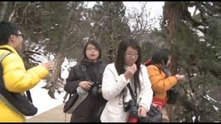 可道中學(嗇色園主辦)四川考察團2010﹣黃龍