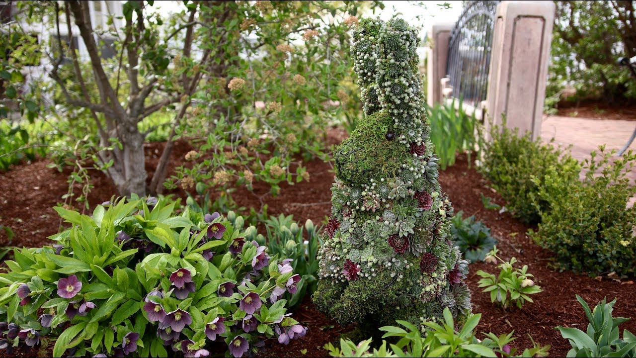succulent-topiary-bunny-garden-answer