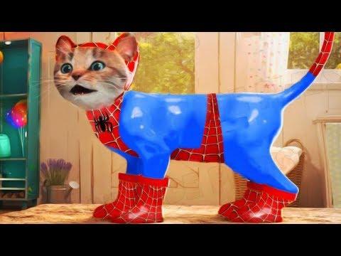 Lindo Gatito Aventuras - Play SpiderCat Costume Dress Up Party Game | Dibujos Animados Infantiles