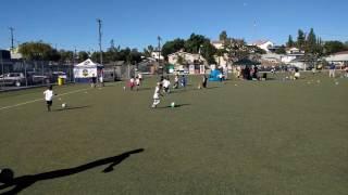 ayso soccer team los feliz u6 games