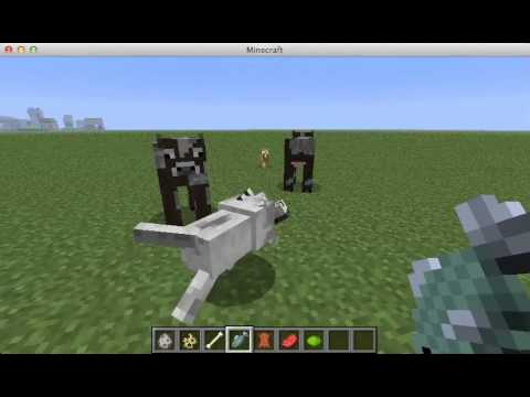 Wolf – Official Minecraft Wiki