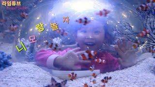 아쿠아리움 니모 우파루파 닥터피쉬 구피 디스커스 대형금붕어 관상어 박람회 Aquarium Fancy Fish  Exhibition Игрушки 라임튜브