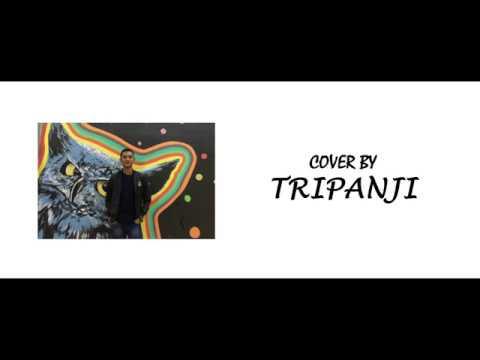 Lagu Alas 2018 | Abadi Selian - Antat Takhuh  (Cover by Tripanji)