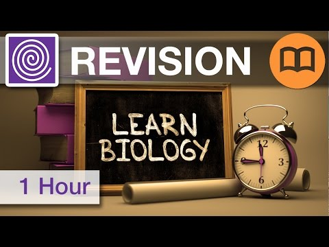 An Hour of Science GCSE and A Level Revision Music: Edexcel, PSI, AQA, Revision Music, Exam Practice