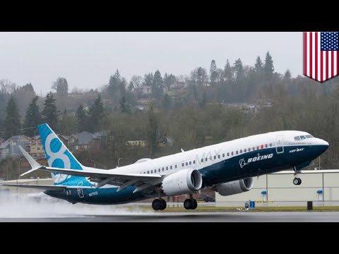 Boeing 737 Max 8 design issues - TomoNews