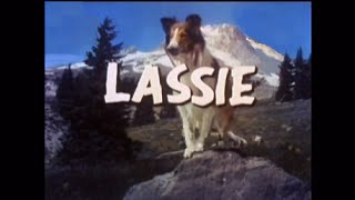 Lassie - Episode #367 - The Little Christmas Tree - Season 11, Ep. 15 - 12/20/1964