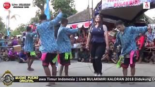 Goyang Rasho Artis Cantiknya Wijoyo Putro Original Live Bulakmiri 2018
