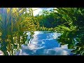 Water Sounds for Relaxation in Paradise | Sleep, Study, Meditate | 10 Hours White Noise