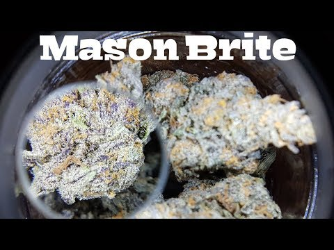 "Canadian Cannabis ""Mason Brite"" Stash Jar Lid Review"