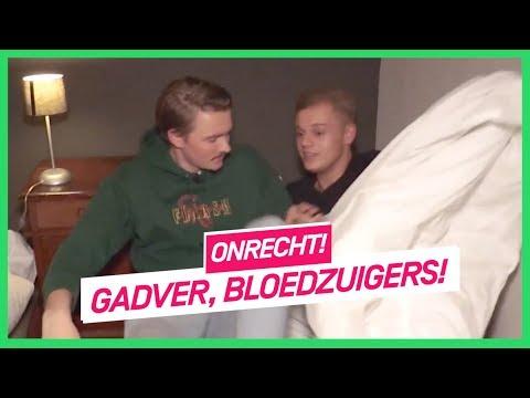 Onrecht! | Bram En Dennis Infiltreren In Hotel Vol Ongedierte | NPO 3 Extra