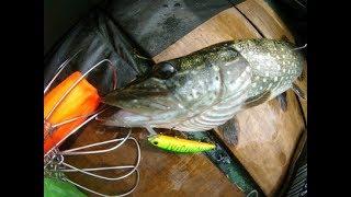 Ловля щуки в начале июня. Где ловить щуку в жару. Рыбалка на щуку на воблеры. Воблер mondero 90 sp.