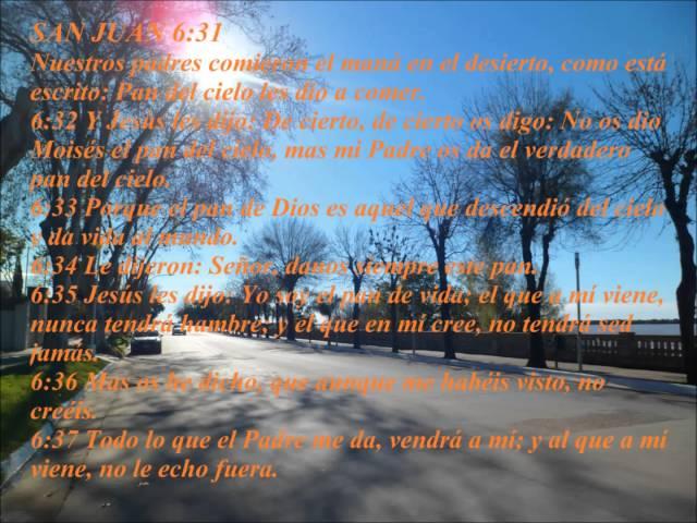 predica san juan 6 25-40