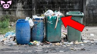 Garbage Men Share Their Most Frightening Discoveries