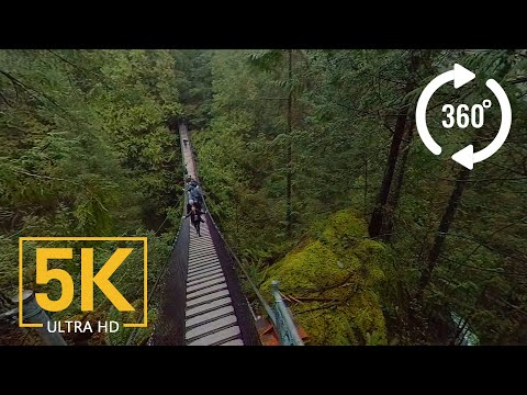 Virtual Nature Relaxation – VR 360° 5K Video – Creek Canyon Trail, BC, Canada
