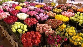 China's Kunming remains one of world's top flower markets