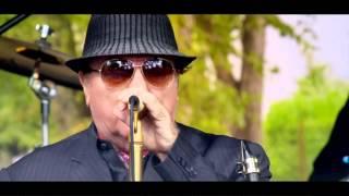 Van Morrison & Chris Farlowe Born to Sing (Live at Van
