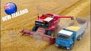 Harvest 2019 on the Canterbury Plains - New Zealand | Clover seed - Baling - Onions and more