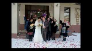 Свадьба Елена и Алексей