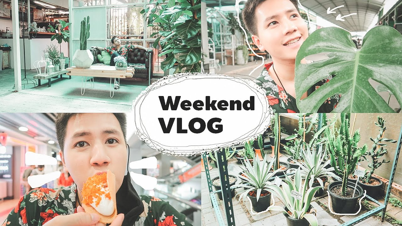 Weekend Vlog : ตามติดชีวิตวันหยุด แนะนำลูกชาย ไปตลาดต้นไม้ และอีกมายมาย 🌳 l กัสเด้อ EP.6