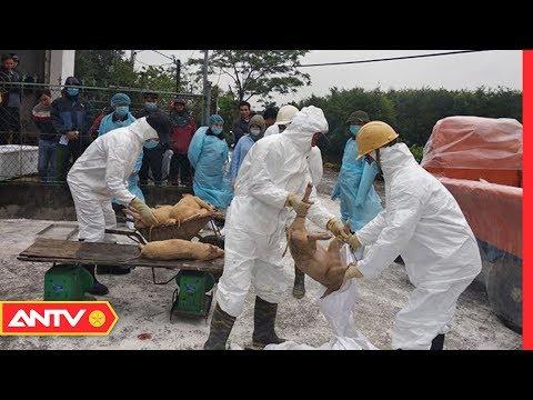 An ninh ngày mới hôm nay | Tin tức 24h Việt Nam | Tin nóng mới nhất ngày 17/03/2019 | ANTV