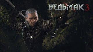 Ведьмак 3 Дикая охота The Witcher 3 (18+)