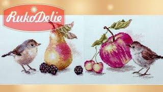 Обзор вышивки Алиса с птичками и фруктами 🐦
