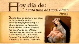 hoy día de... Santa Rosa de Lima,  VirgenPatrona de América  Latina