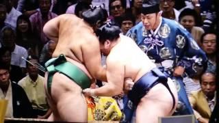 trận chiến cuối cùng của sumo nhật