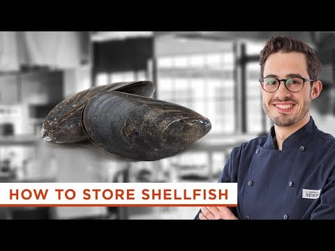 How To Store Shellfish