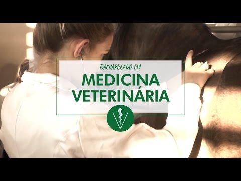 Medicina Veterinária FAG de YouTube · Duração:  2 minutos 40 segundos